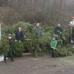 2016 Weihnachtsbaum