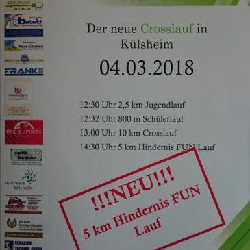 1.Puls 300 Cross- und Hindernis-FUN-Lauf in Külsheim 04.03.2018